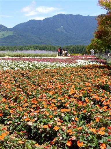 山中湖 002.jpg