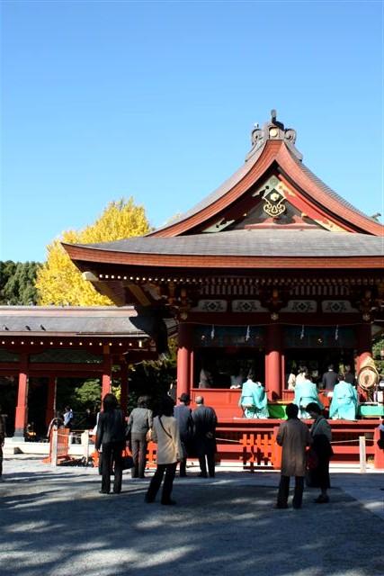 八幡宮IMG_0035 (7).JPG
