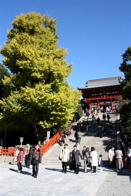 八幡宮IMG_0035 (8).JPG